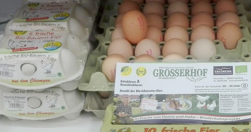 Bio-Eier Bruderhahn aus dem Chiemgau